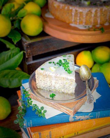 Vegan Gluten Free Poppy Seed Cake